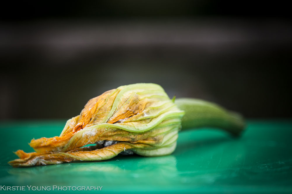 courgetteflower